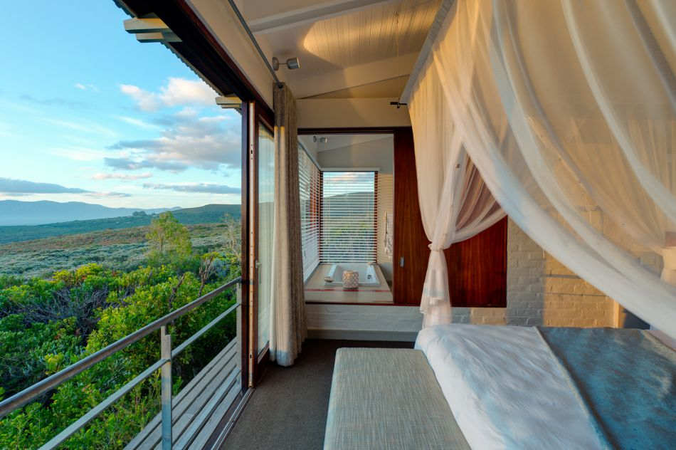 pic1360grootbos-luxury-accommodation-forest-lodge-luxury-suite-2