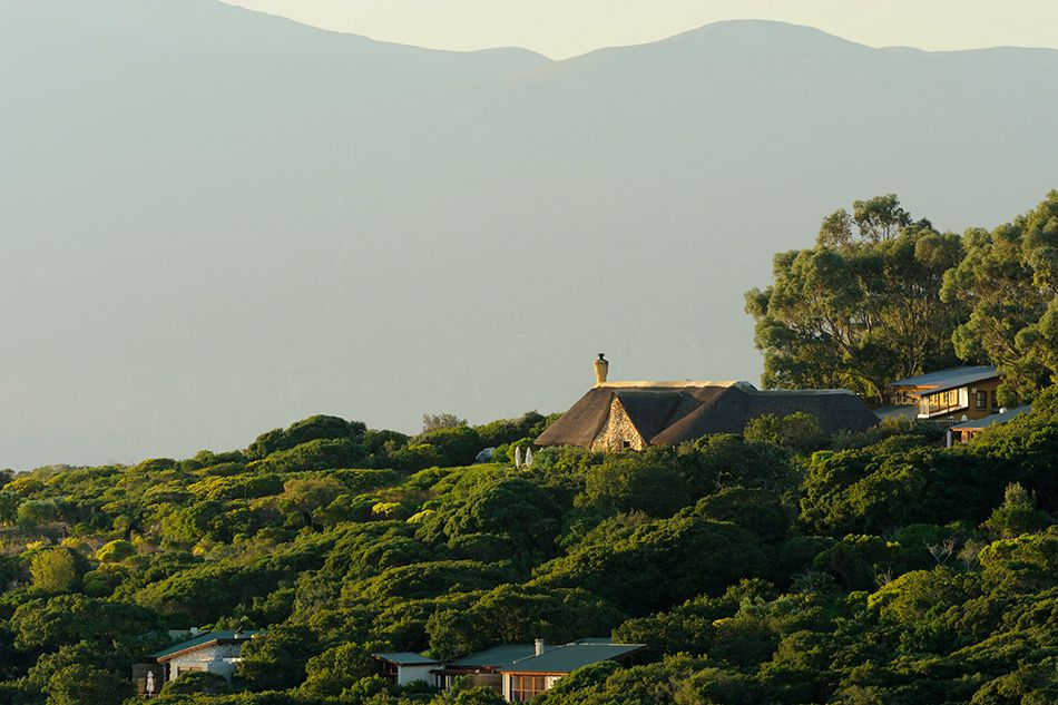 pic1364distant-view-of-garden-lodge-lr