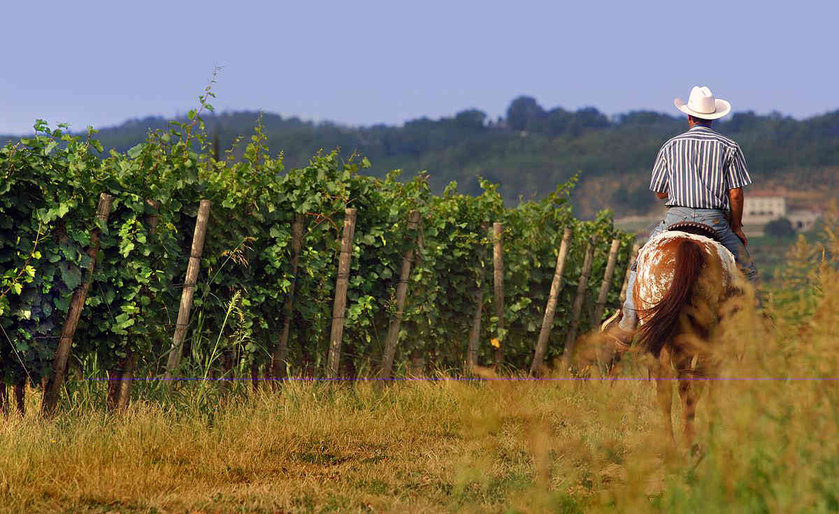 In-Franciacorta-a-cavallo1