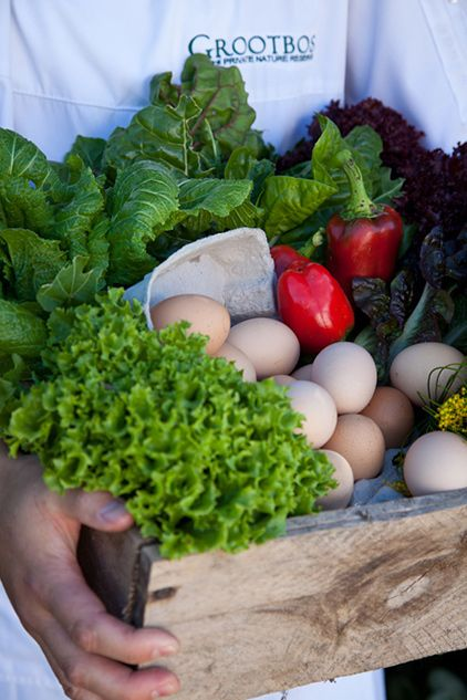 pic1321fresh-produce-ready-to-be-taken-to-the-five-star-restaurants-at-grootbos-lr