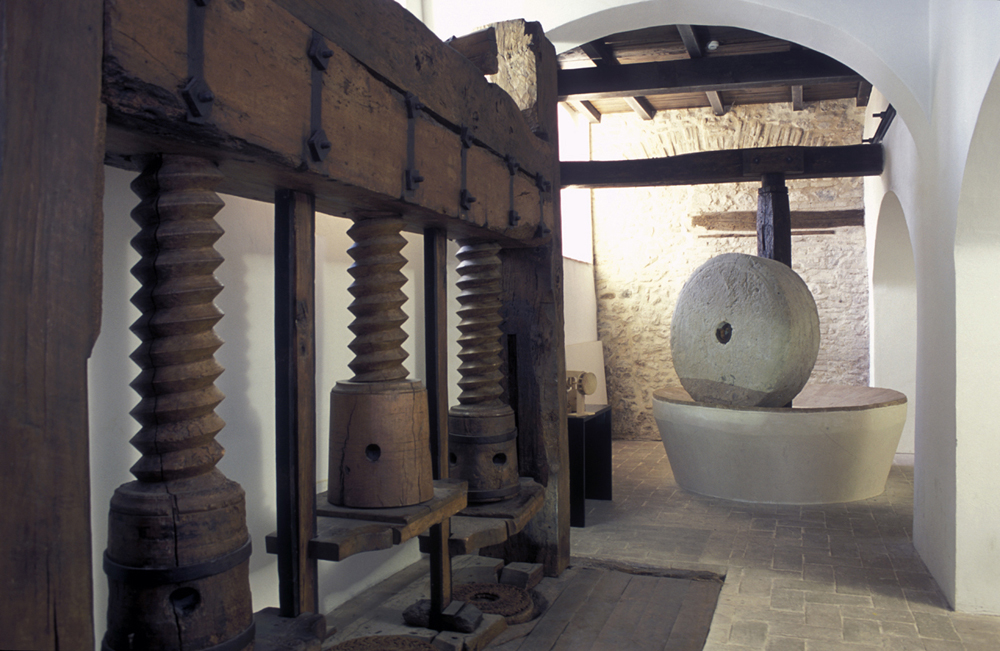 Trevi, Museo dell'olio