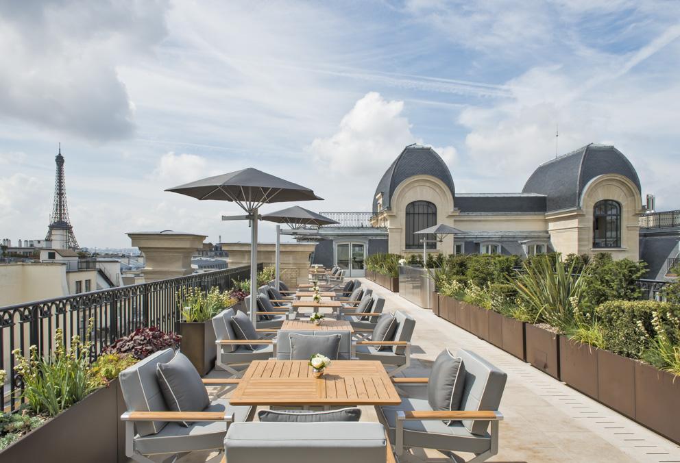 oiseau-blanc-terrace-340867