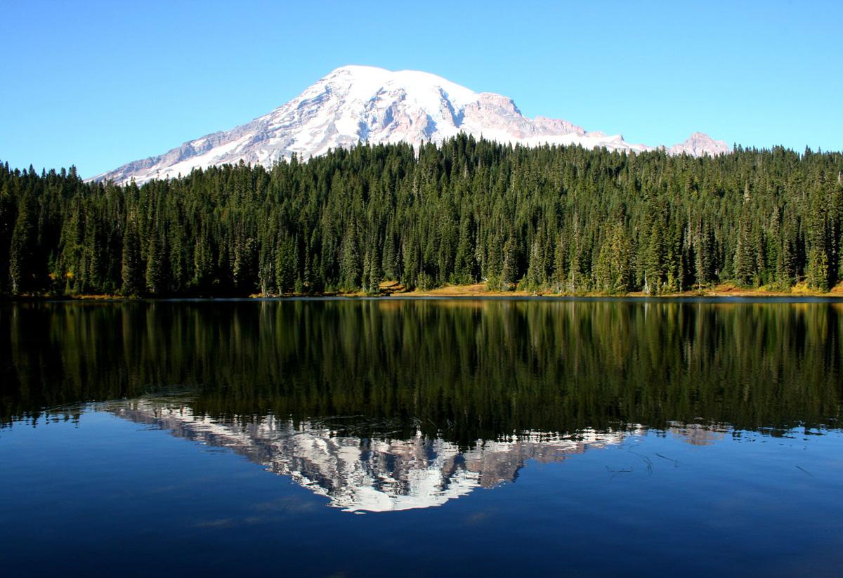 Mt Rainier (WA)