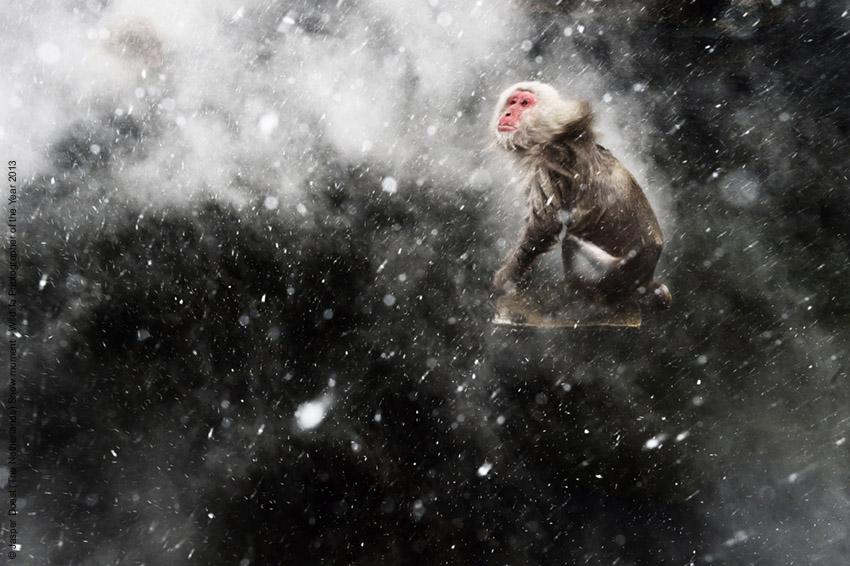 Il momento della neve