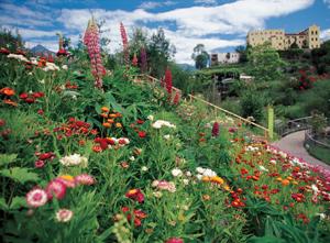 Trauttmansdorff_low_giardino_piante_perenne_fiorite