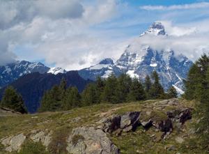 gran-balconata-Il-Cervino-lungo-il-trekking