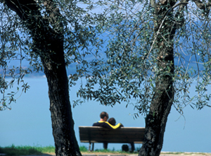 13_strada-olio-dop-umbria---San-Feliciano---Lago-Trasimeno