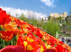 Veduta-Castello-Trauttmansdorff-e-tulipani
