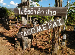 Welcome-to-Tacompai