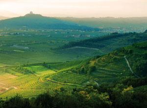 Illasi valleys, colline