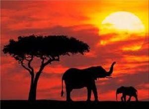 images kenya