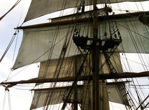 sailiningm