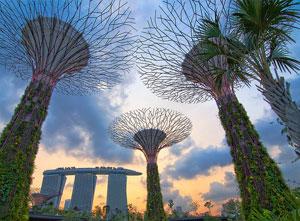 singaporem