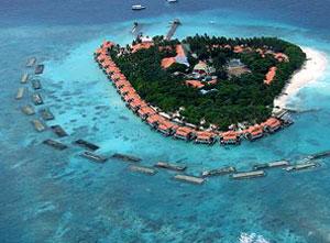 maldivetaj