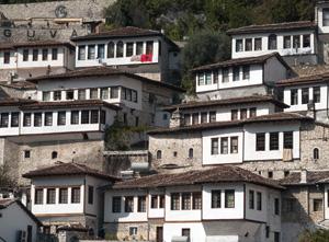 Albania imm ev
