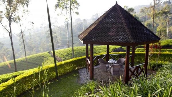 Tea Trials Sri Lanka