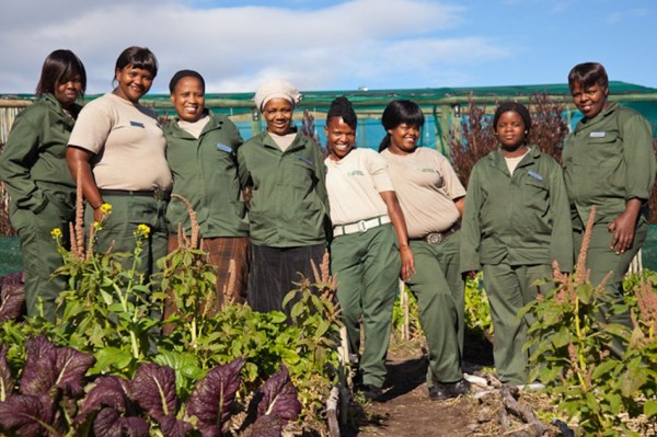 pic1331grootbos-foundation-teaches-skills-for-subsistence-farming-LR