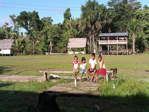 Amazonia peruviana