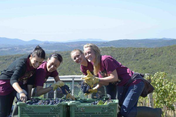 rwcdb-harvest-event