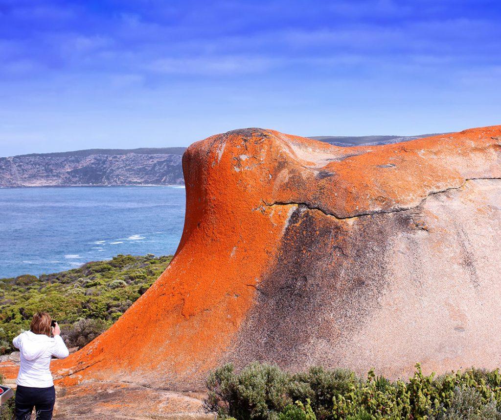 9225_Kangaroo Island-Flinders Chase 1101x921