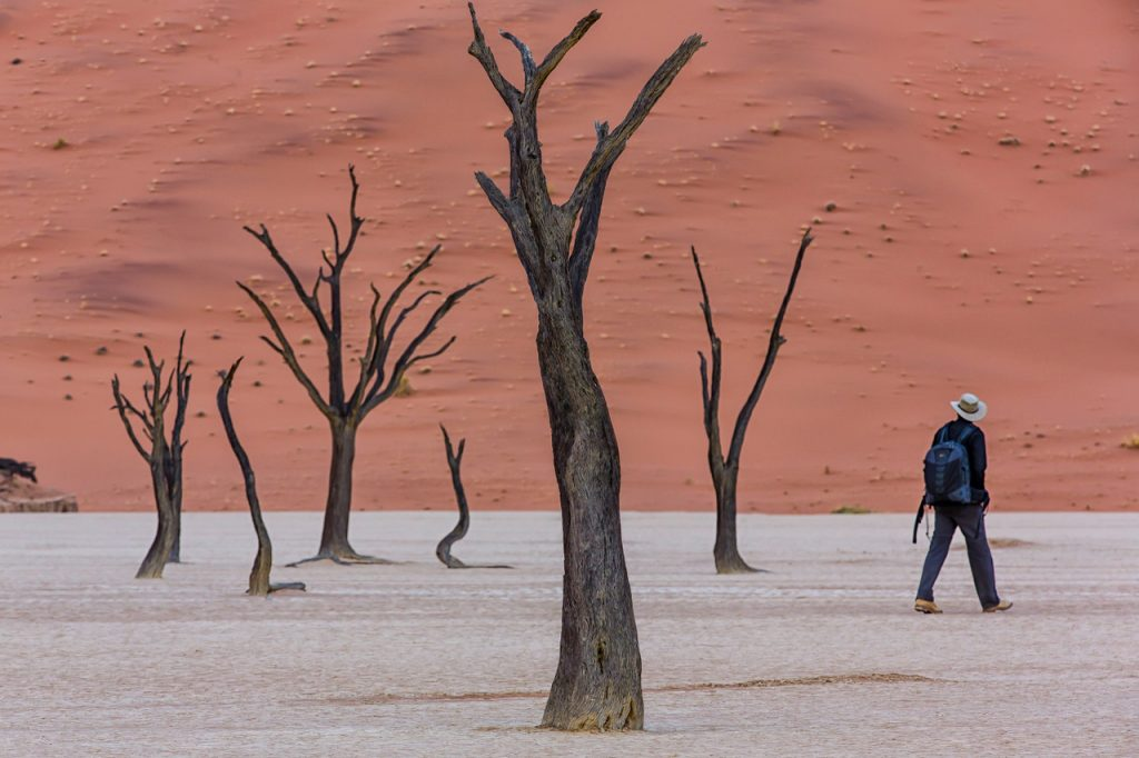 Dead Vlei, Dunes at Namib-Naukluft National Park, Sossusvlei Area, Namibia