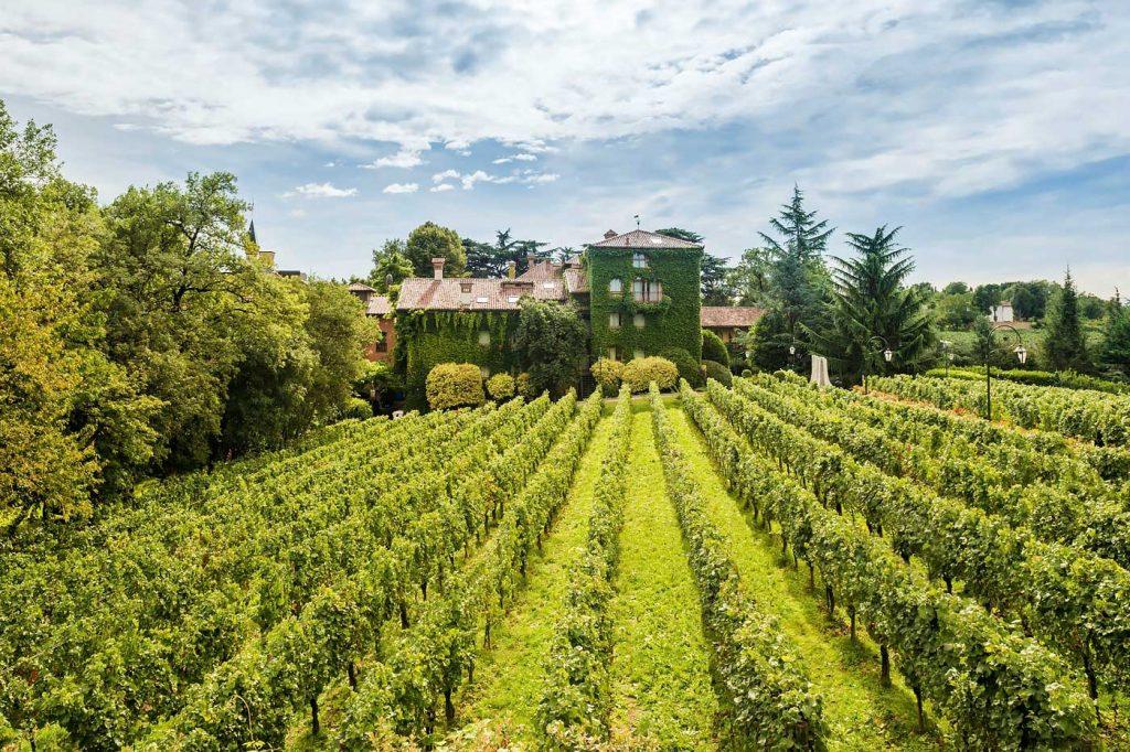 hotel-albereta-franciacorta-vino-01