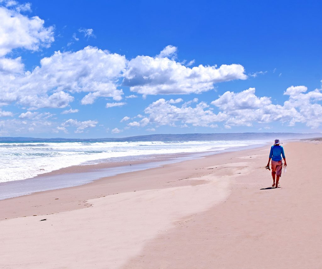 8444_Coorong NPark-South Australia 921