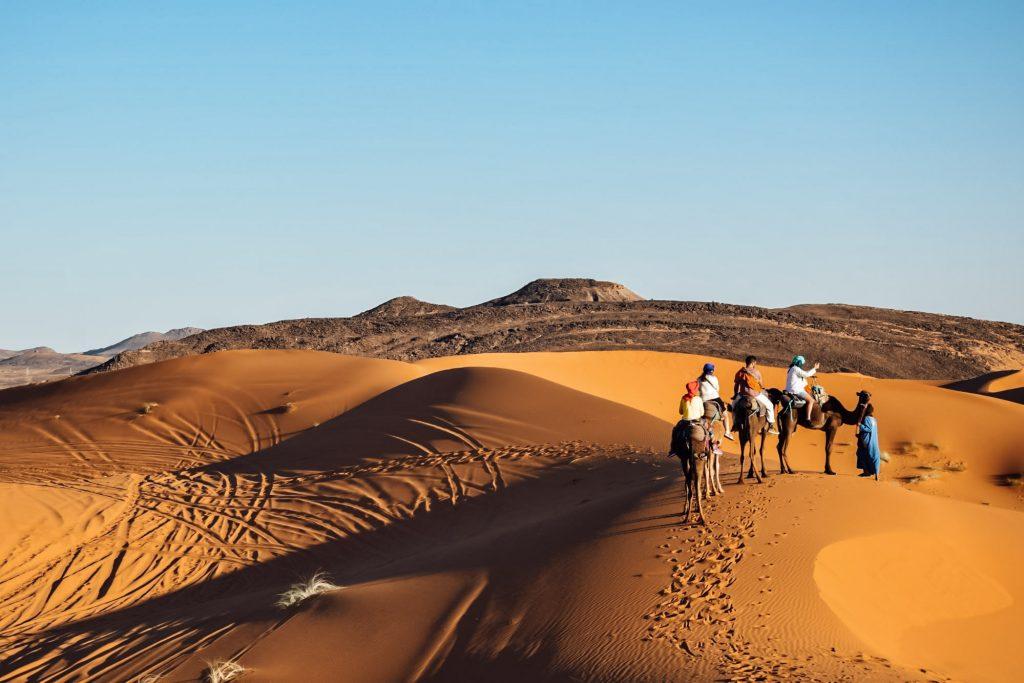 Kiwi-The-Explorer-Beatrice-Bono-Marrakech-cosa-vedere-15