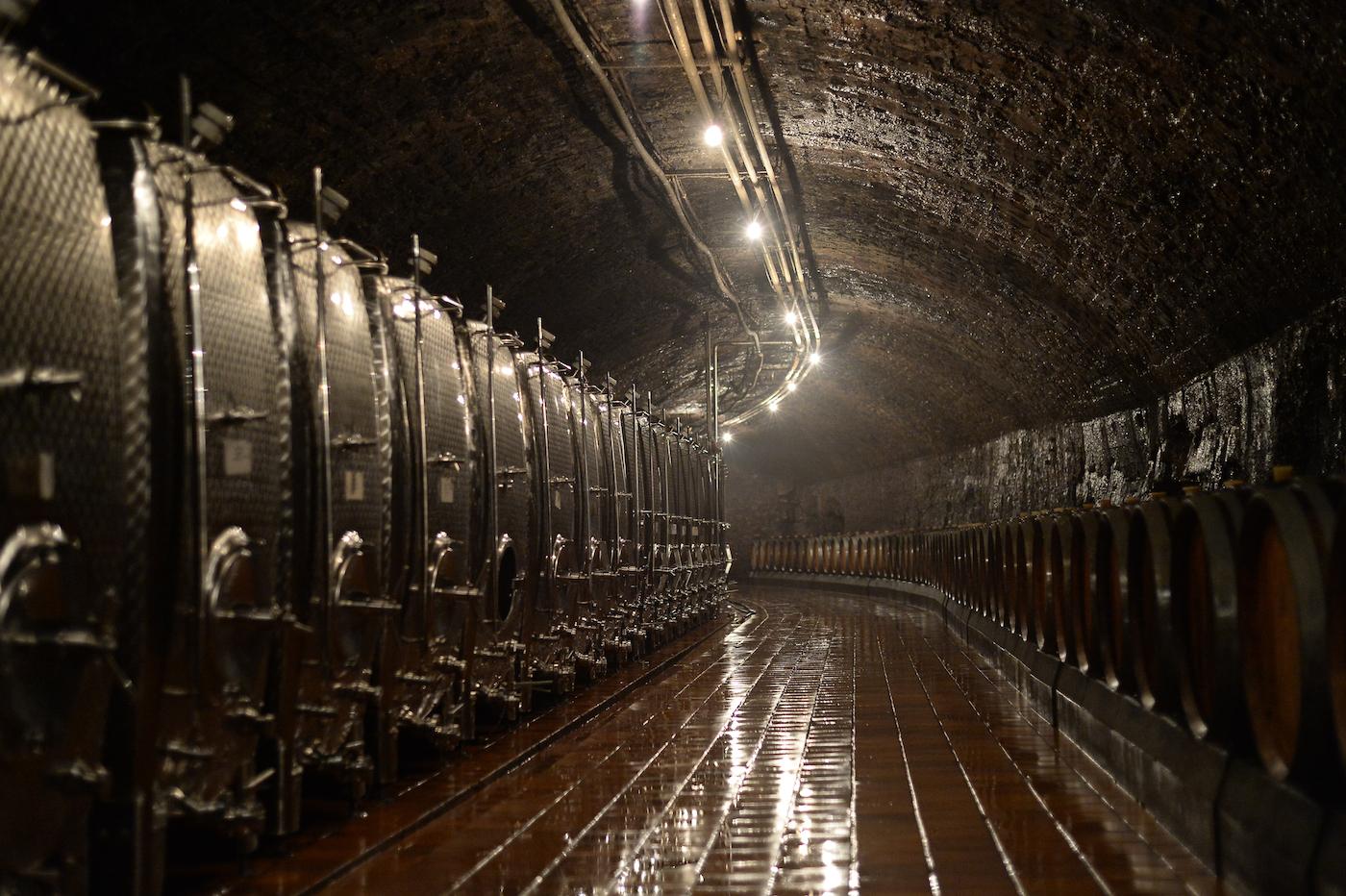 Le Caves Saint Martin - foto Jonathan Godin/LFT