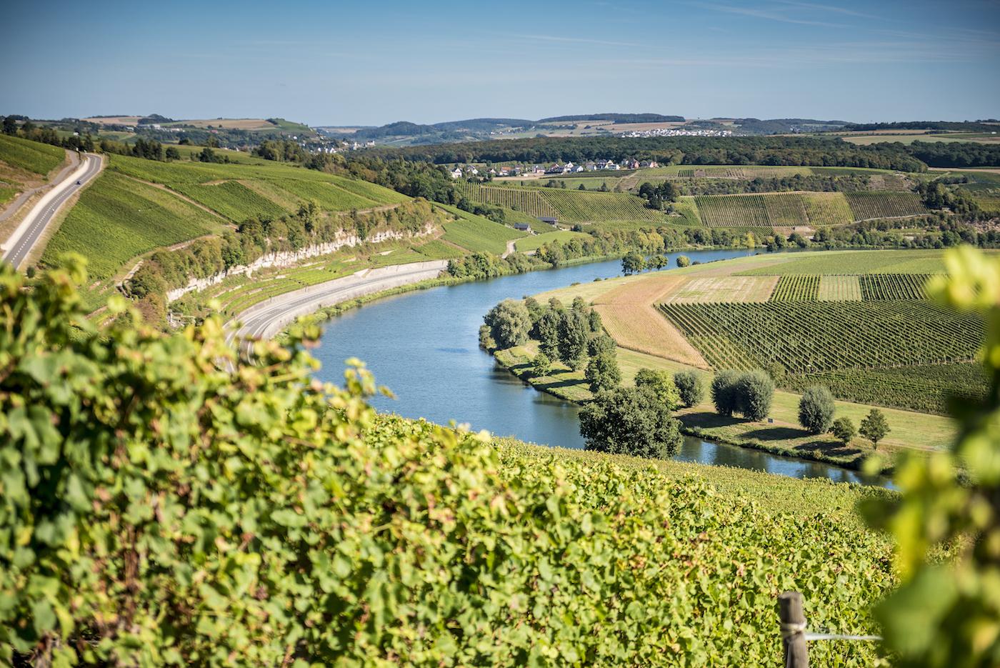 Panorama della valle della Mosella - foto Pulsa Pictures/LFT