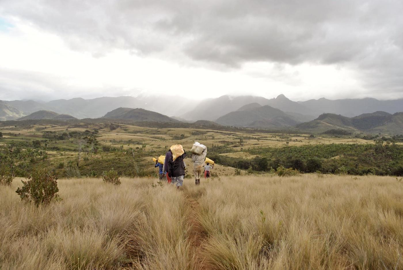 Paesaggio malgascio vicino ad Ampasy - foto Rachel Sawyer