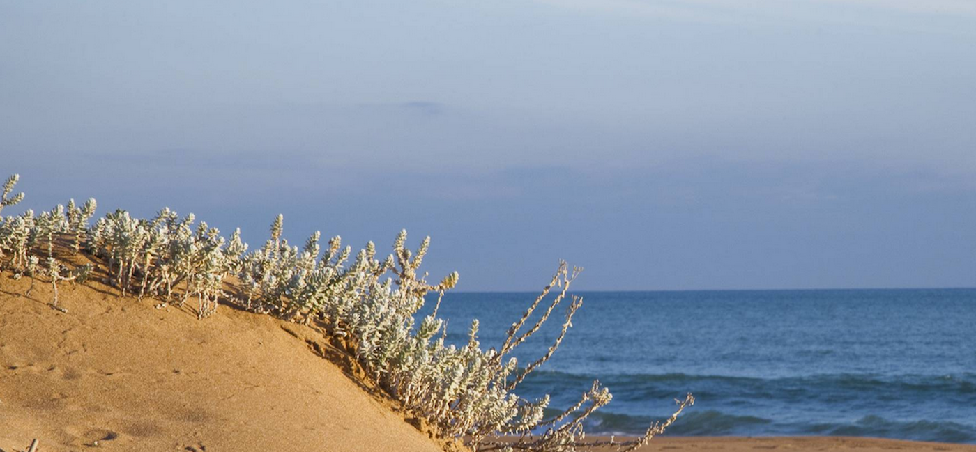 sicilia-menfi-mandarossa-spiaggia-dune
