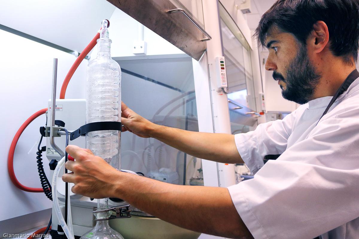 Copenaghen - Roberto Flore nella sua cucina laboratorio all'Università di Danimarca