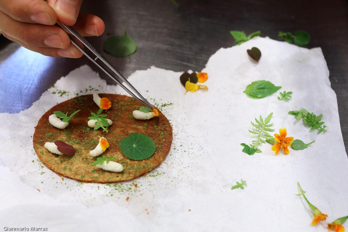 Copenaghen - Preparazione di una cialda di granella di fuco nixtamalizzata con larve di ape, acetosa e peperoncino