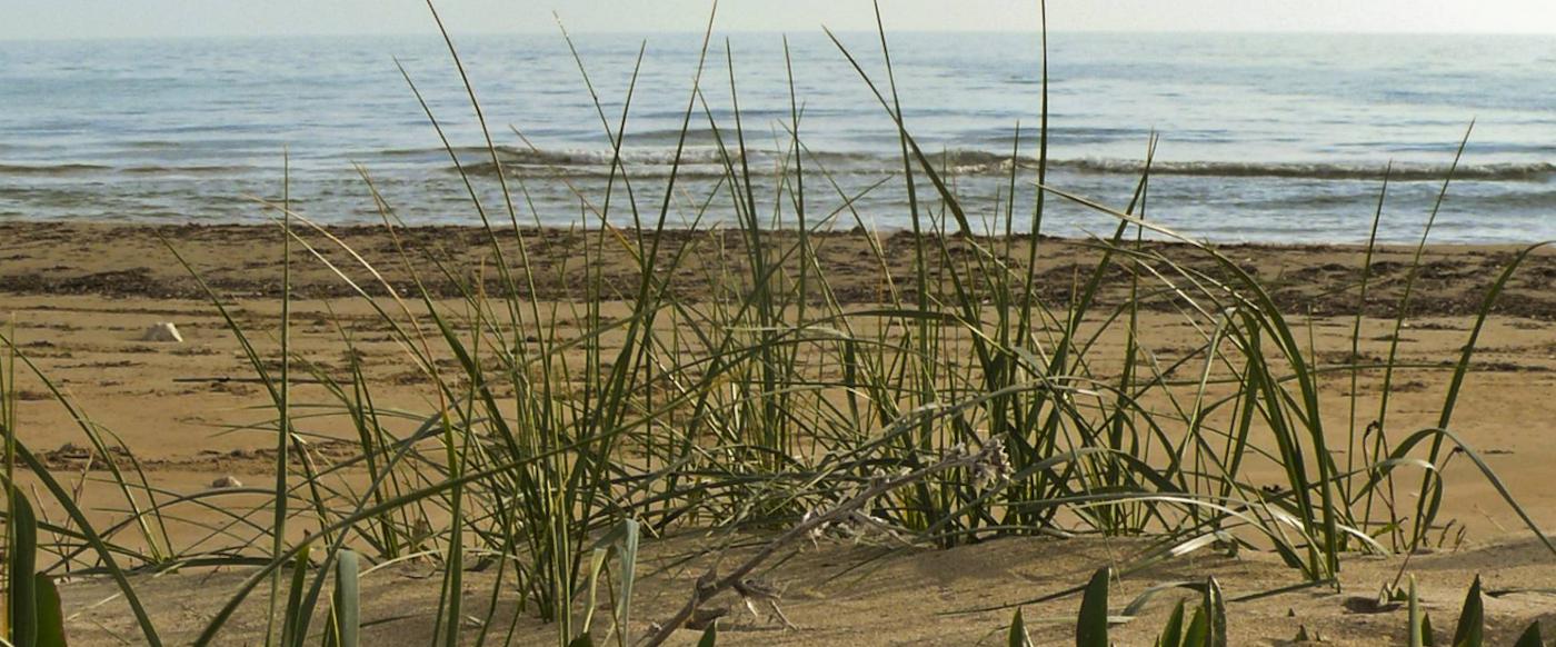 Una spiaggia nei pressi delle tenute Mandrarossa