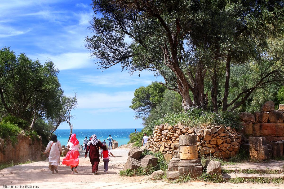 Algeria - La città romana di Tipasa