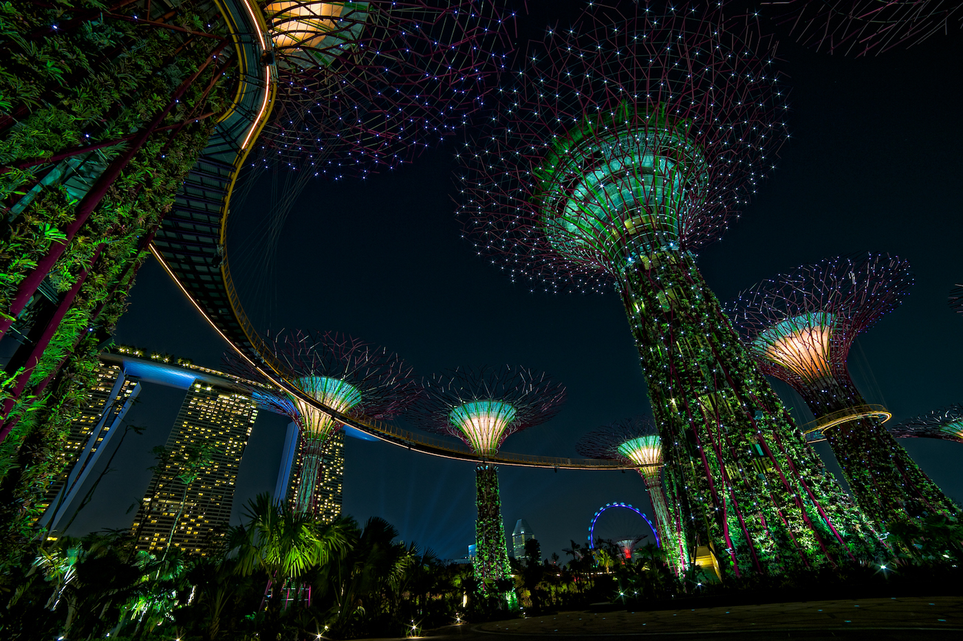 I Super Trees a Gardens by the Bay
