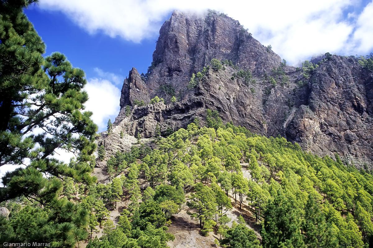 La Palma - Caldera del Taburiente