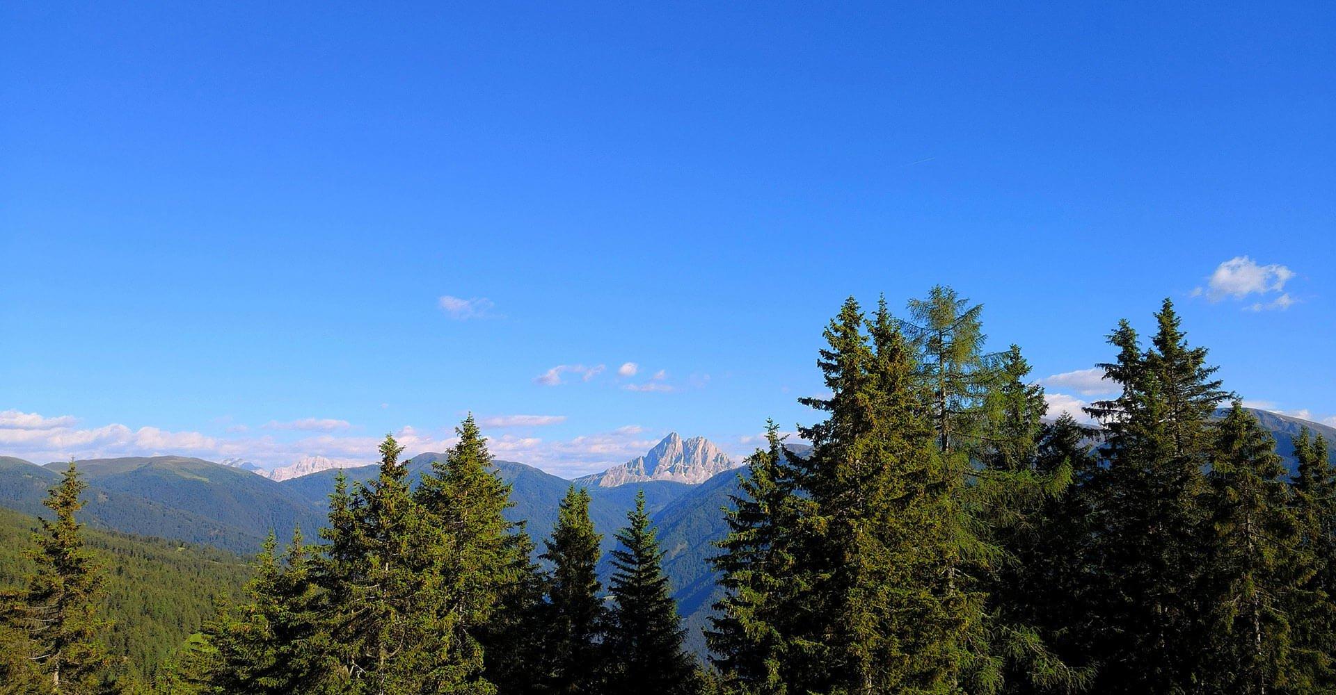 Panorma dall'alpe di Rodengo Luson